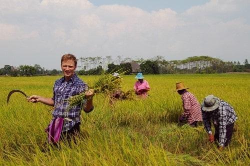 توسعه گردشگری کشاورزی